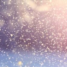 Ökomese 14. – A színes hópehely