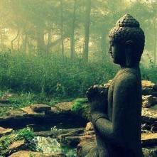 Buddhista ökológia