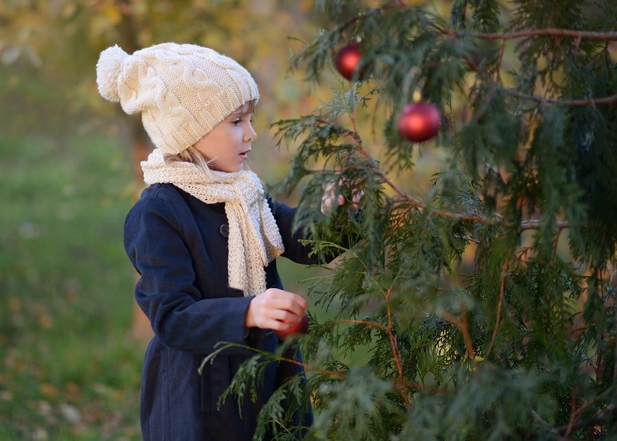 Karácsonyfa a kertben