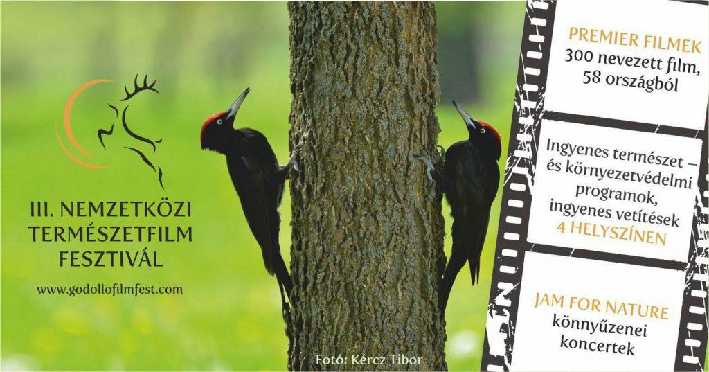 gödöllőfilmfest.plakát