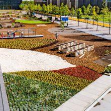 Essen, Európa Zöld Fővárosa nyáron még zöldebb lesz